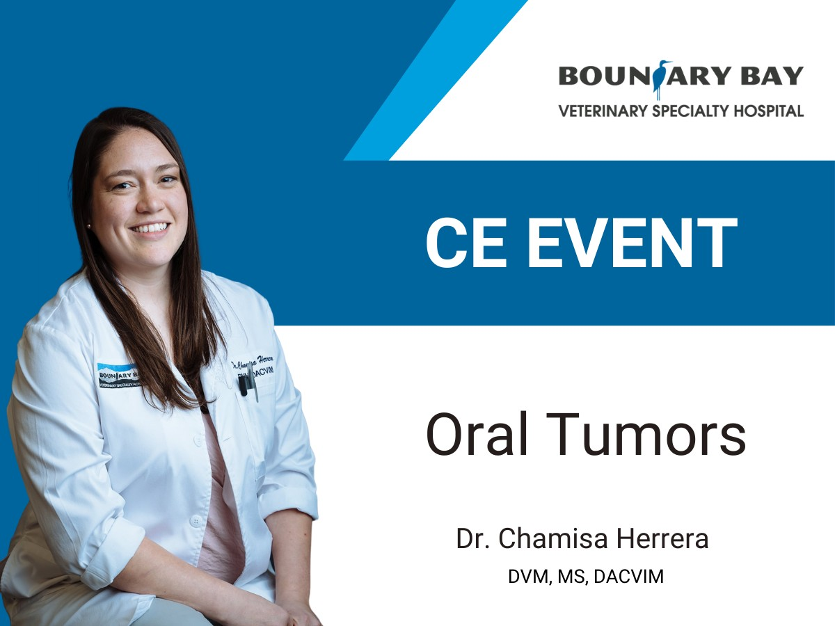 Dr. Chamisa Herrera presents a ce event on oral tumors